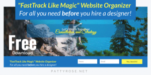 DIY Website Organizer Free Training Series