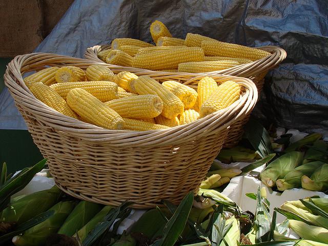 sweet-corn-in-basket