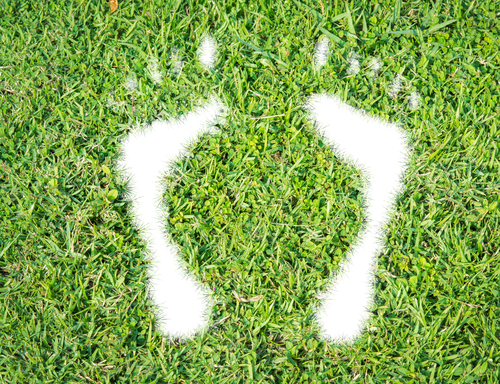 Start Thinking About Your Carbon Footprint