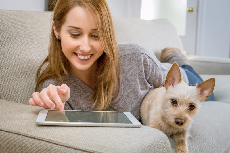 How Your Dog Can Improve Productivity When Working from Home