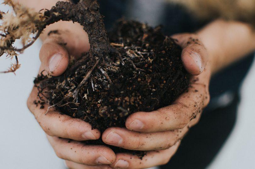 Divorce & A Patch of Dirt